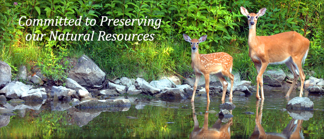 Committed to Preserving our Natural Resources